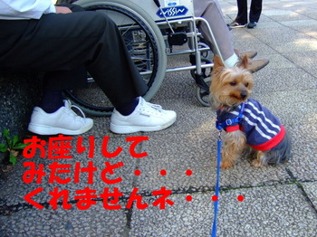 2007_0920rennketu0042