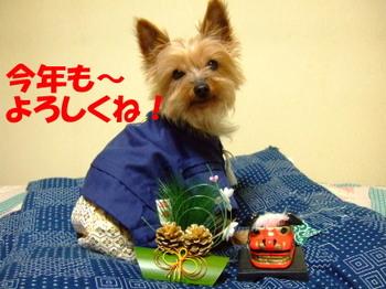 Tarohakama