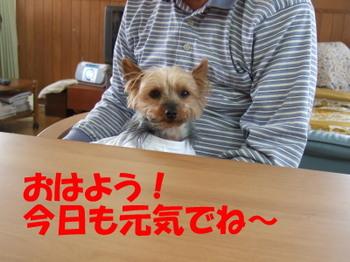 Ohayouyama
