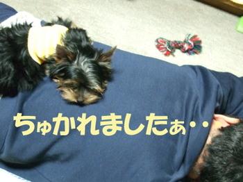 Photo_140