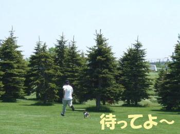 Photo_178