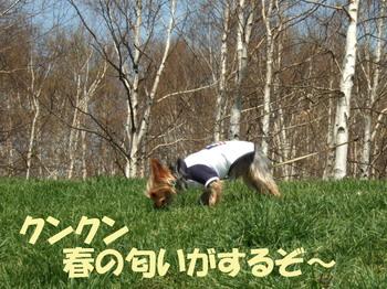 Photo_79